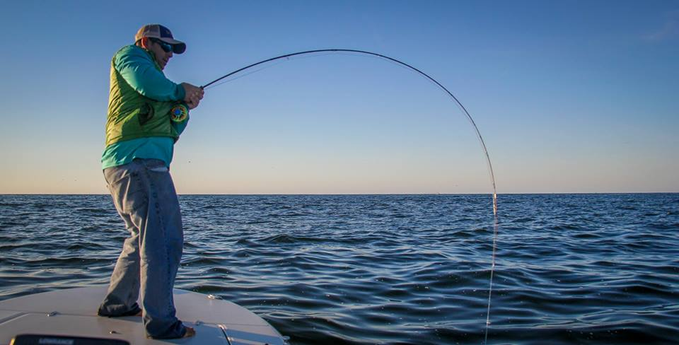 Capt john mauser tailing tide guide service nc late for Nc saltwater fish