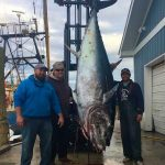 north-carolina-record-bluefin-tuna